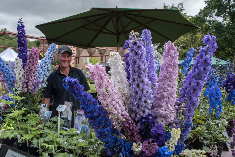 Graham and his Delphiniums