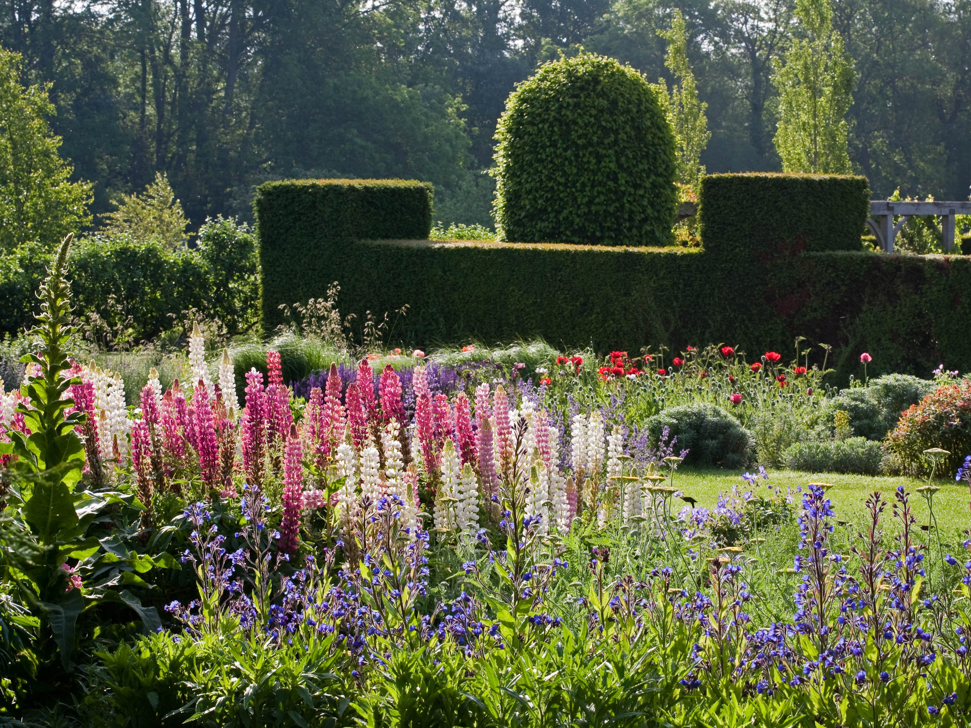 Waterperry Gardens Image 2014 4 x 3.jpg
